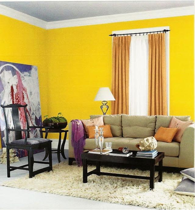 sơn nội thất màu vàng 27